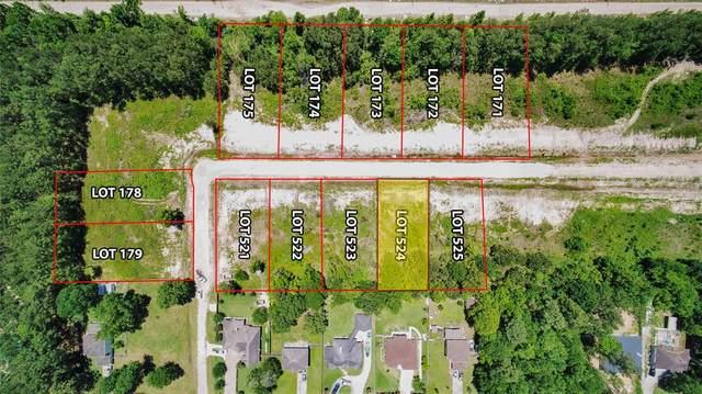 Lot 524 Indigo Way, Porter, TX 77365 (MLS #65600551) :: Michele Harmon Team