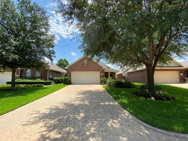 25003 Spring Ash Lane, Katy, TX 77494 (MLS #65605802) :: Green Residential