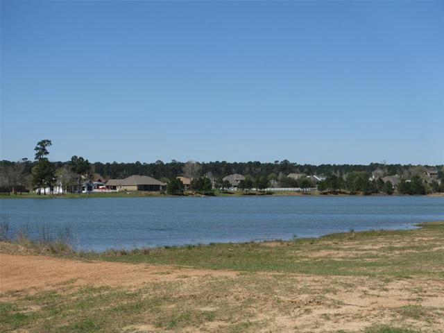 8776 Grand Lake Estates Drive, Montgomery, TX 77316 (MLS #6561375) :: The SOLD by George Team