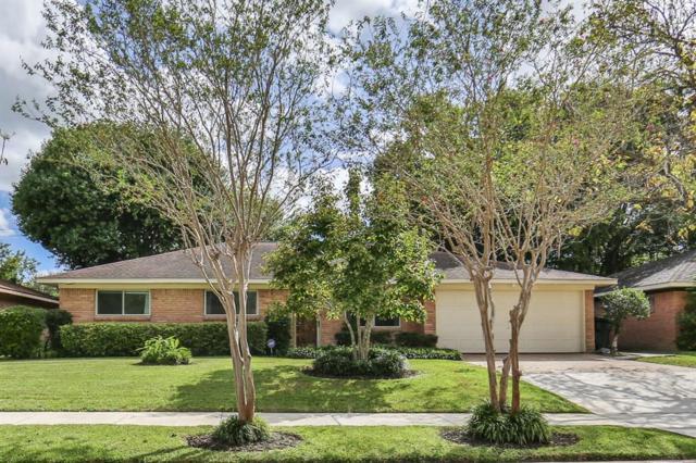 5519 Ettrick Drive, Houston, TX 77035 (MLS #65782289) :: Magnolia Realty