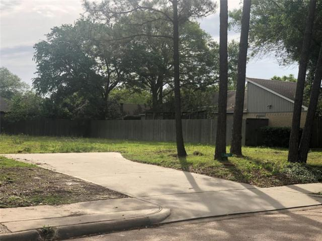 1007 Stoney Hill Drive, Houston, TX 77077 (MLS #6578594) :: Texas Home Shop Realty