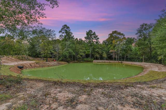23506 High Meadow Estates Drive, Montgomery, TX 77316 (MLS #65808549) :: The Heyl Group at Keller Williams