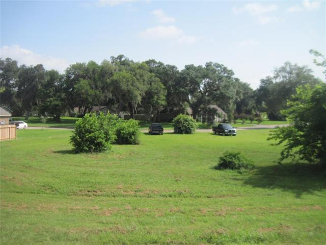 257 Twin Lakes Blvd, West Columbia, TX 77486 (MLS #6584368) :: The SOLD by George Team