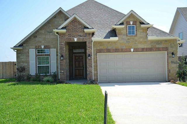 19018 Minero Lane, Montgomery, TX 77356 (MLS #65844315) :: REMAX Space Center - The Bly Team
