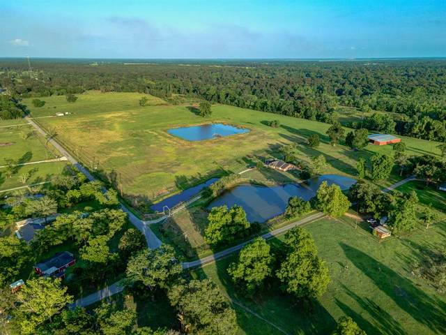 463 County Road 2089, Liberty, TX 77575 (MLS #65851036) :: Ellison Real Estate Team