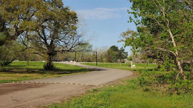 137 Country Oaks Street, Brazoria, TX 77422 (MLS #65960403) :: The SOLD by George Team