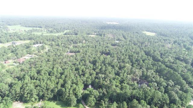 0 Palmetto, Magnolia, TX 77354 (MLS #66195453) :: Krueger Real Estate