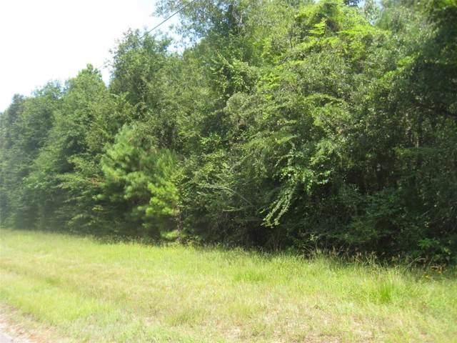 7453 Clark Road, Plantersville, TX 77363 (MLS #66206395) :: The Jennifer Wauhob Team