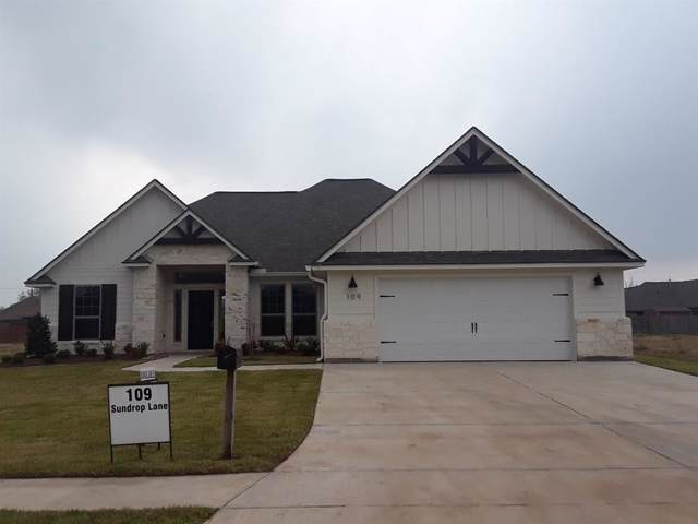 109 Sundrop Lane, Richwood, TX 77566 (MLS #66269732) :: Texas Home Shop Realty