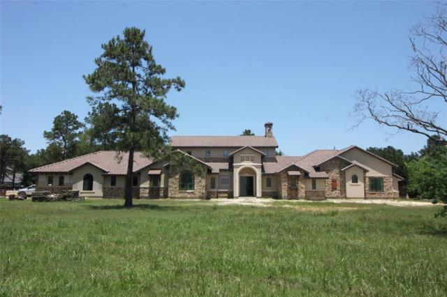 41 Willowcreek Ranch Road, Tomball, TX 77377 (MLS #66278752) :: Giorgi Real Estate Group