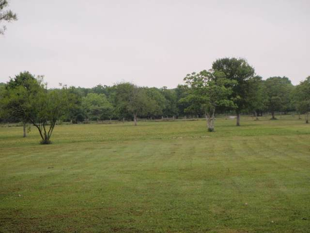 LOT 4102 Pr 652, Sargent, TX 77414 (MLS #66294290) :: Ellison Real Estate Team