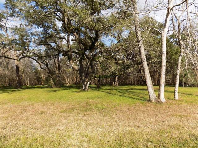 4-6 County Road 161 Shilo Loop, Cedar Lane, TX 77415 (MLS #66296877) :: Green Residential
