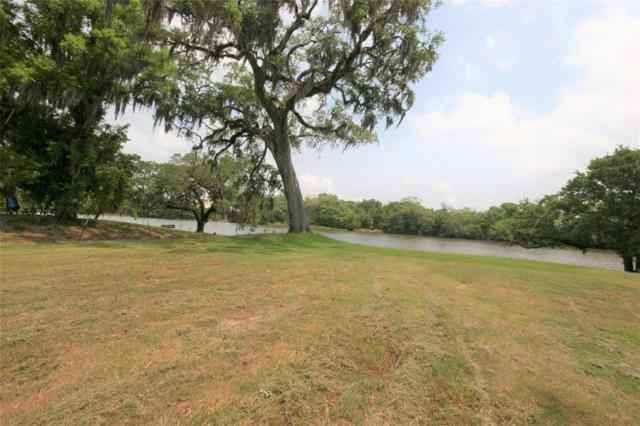 3773 County Road 309, Brazoria, TX 77422 (MLS #66323593) :: The SOLD by George Team