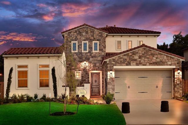 1459 Torrijos Court, Shenandoah, TX 77384 (MLS #66364070) :: Fairwater Westmont Real Estate