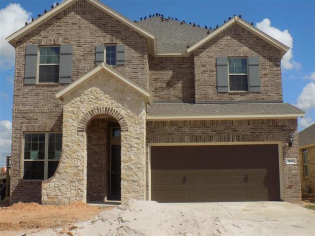 30314 Aster Brook, Fulshear, TX 77423 (MLS #66382115) :: Krueger Real Estate