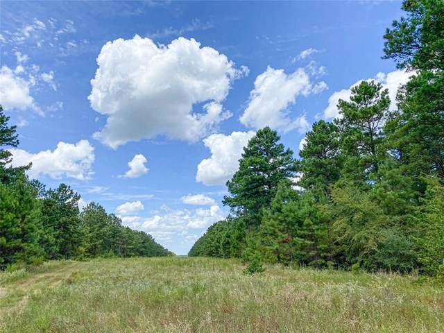 00 Cr 4250, Lovelady, TX 75851 (MLS #66410507) :: The Freund Group