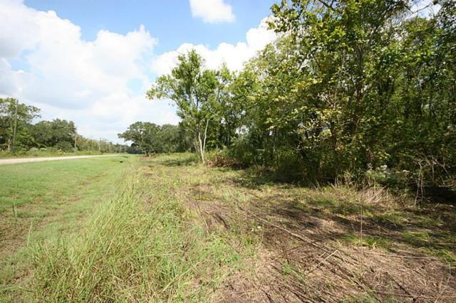 33611 Blue Marlin Drive, Richwood, TX 77515 (MLS #66427934) :: Magnolia Realty