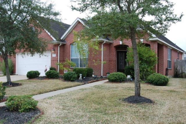 8518 Lemonmint Meadow Drive, Katy, TX 77494 (MLS #66438838) :: Texas Home Shop Realty