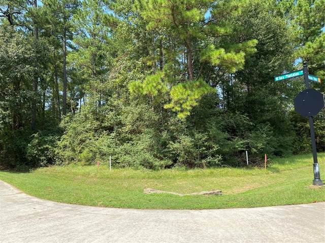 11911 Tara Plantation Drive, Tomball, TX 77375 (MLS #66480489) :: Green Residential