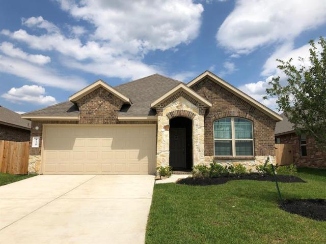 4910 San Valentino Drive, Katy, TX 77493 (MLS #66506610) :: Texas Home Shop Realty