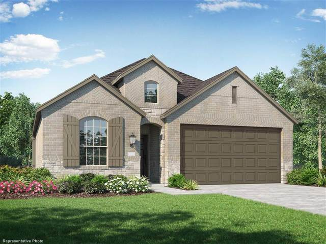 3719 Handel, Iowa Colony, TX 77583 (MLS #66510302) :: Bay Area Elite Properties