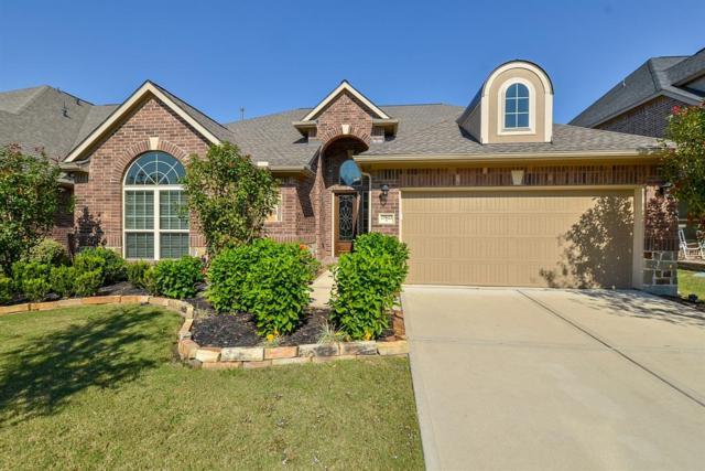 27622 Dalton Bluff Court, Katy, TX 77494 (MLS #66515320) :: Christy Buck Team