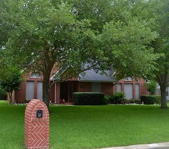 12 Finetta Lane, Alvin, TX 77511 (MLS #66552557) :: NewHomePrograms.com LLC