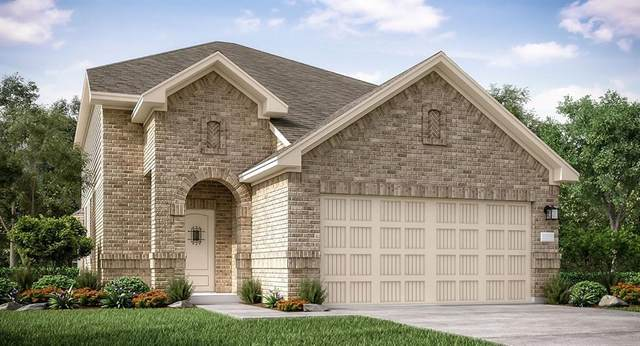 23741 Woodgreen Terrace Drive, New Caney, TX 77357 (MLS #6655924) :: The Home Branch