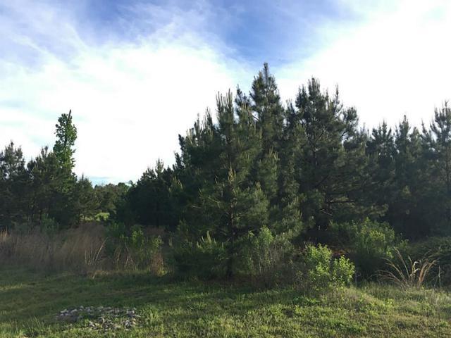 0 Scenic Lake Court, Montgomery, TX 77316 (MLS #66572671) :: Magnolia Realty