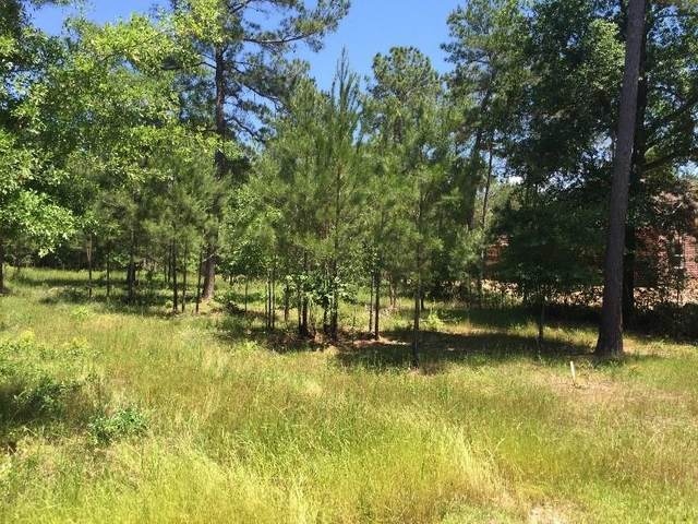 17873 Roundup Drive, Waller, TX 77484 (MLS #66595750) :: Connect Realty