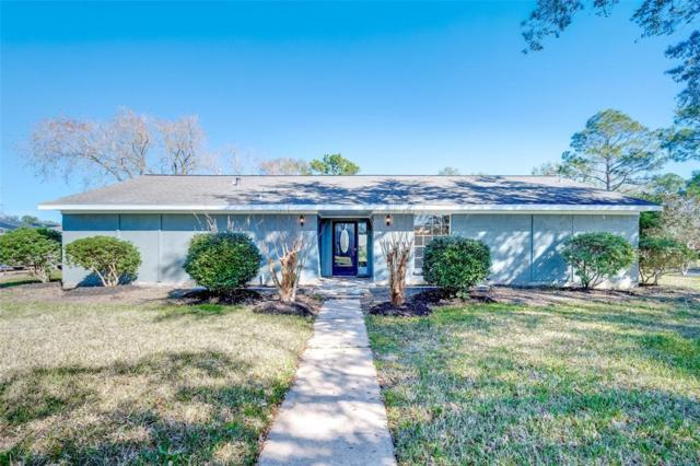 510 Pilgrim Lane, Friendswood, TX 77546 (MLS #66597314) :: The Queen Team