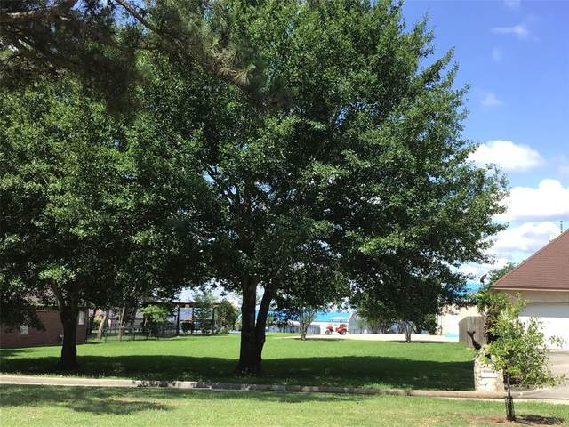 12551 Point Aquarius Boulevard, Willis, TX 77318 (MLS #66637439) :: Lerner Realty Solutions