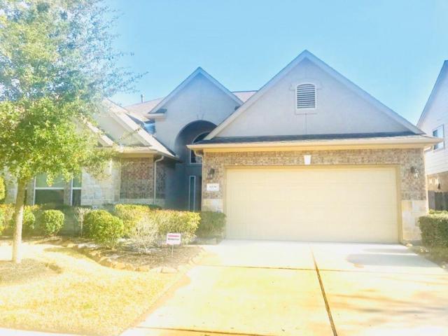 6238 Ledger Lane, Missouri City, TX 77459 (MLS #66643555) :: King Realty