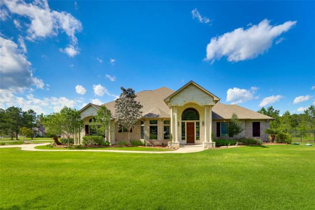 28413 Wild Oaks, Magnolia, TX 77355 (MLS #66653023) :: The SOLD by George Team