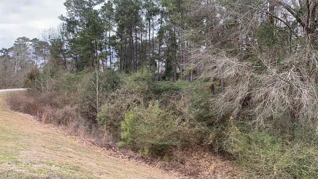 11726 Tara Plantation Drive, Tomball, TX 77375 (MLS #66661658) :: The Property Guys