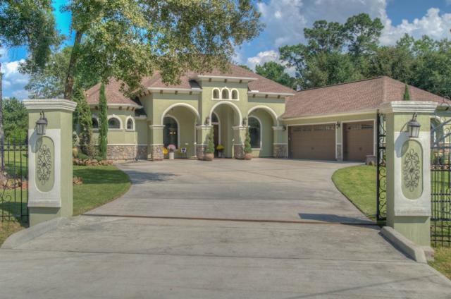 19222 S Cabango Court, Porter, TX 77365 (MLS #66679903) :: The Heyl Group at Keller Williams