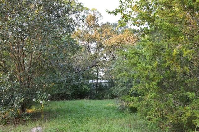 Lot 116 River Run Road, Hockley, TX 77447 (MLS #66720120) :: Green Residential