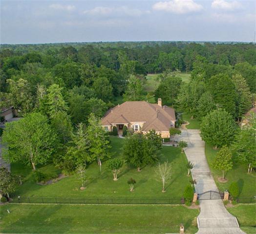 32918 Sawgrass Court, Magnolia, TX 77354 (MLS #66801279) :: Krueger Real Estate