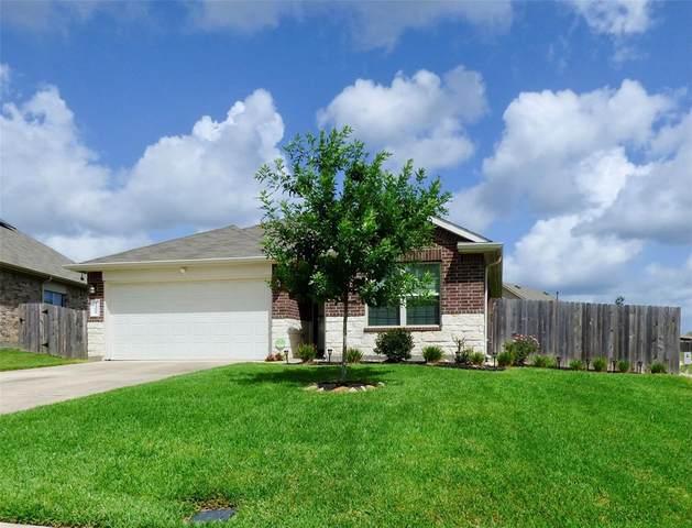 14002 Stony Gap Lane, Conroe, TX 77384 (MLS #66836238) :: Lerner Realty Solutions