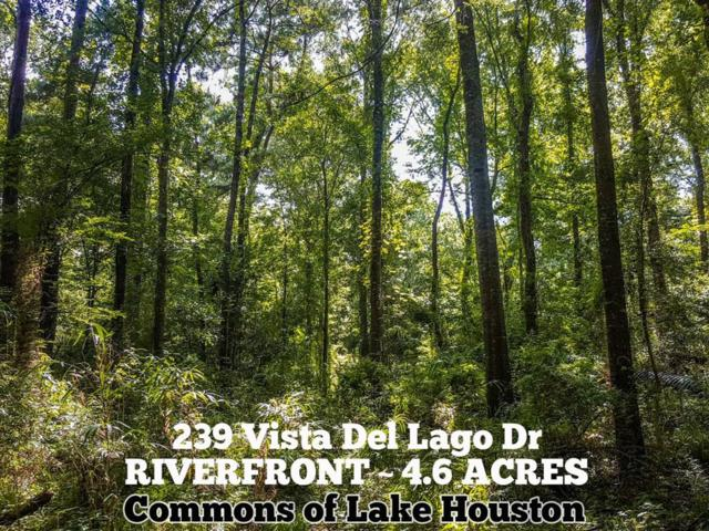 239 Vista Del Lago Drive, Huffman, TX 77336 (MLS #66887226) :: The SOLD by George Team