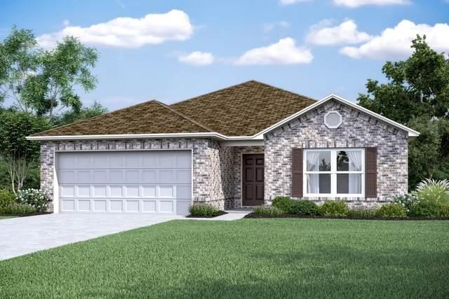 9732 Cold Creek Drive, Conroe, TX 77306 (#66905658) :: ORO Realty