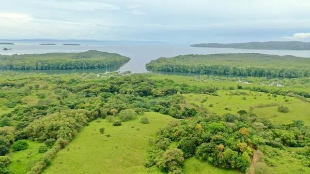 20953 Finca Comunidad El Gabriel, Panama City, TX 00000 (MLS #66940691) :: Homemax Properties