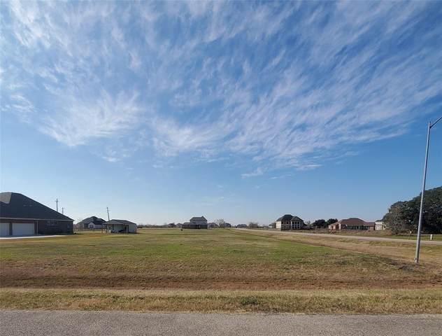 18402 Lakeland Pass, Rosharon, TX 77583 (MLS #66943727) :: Connell Team with Better Homes and Gardens, Gary Greene