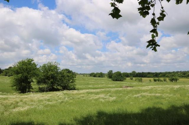 TBD 12.7 Acres Riva  Fm 149 E, Anderson, TX 77830 (MLS #66946290) :: Texas Home Shop Realty
