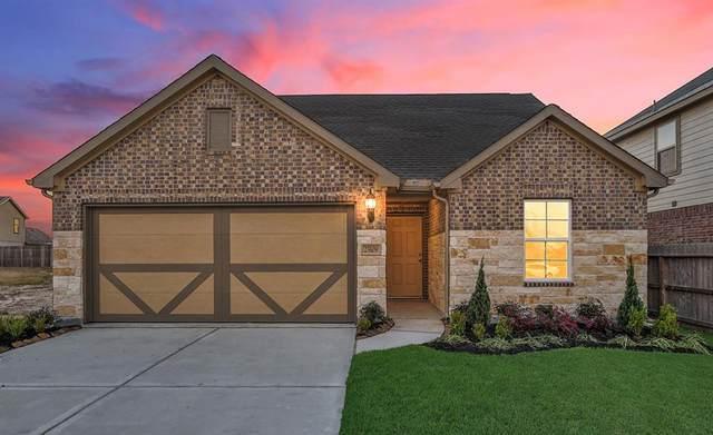 25109 Slow Pines Drive, Porter, TX 77365 (MLS #66987717) :: NewHomePrograms.com LLC