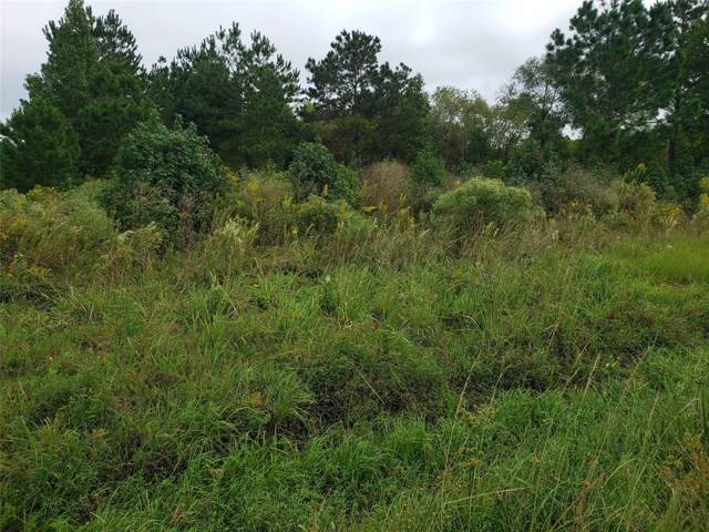 Lot 15 Hwy 321, Dayton, TX 77535 (MLS #67114354) :: Christy Buck Team