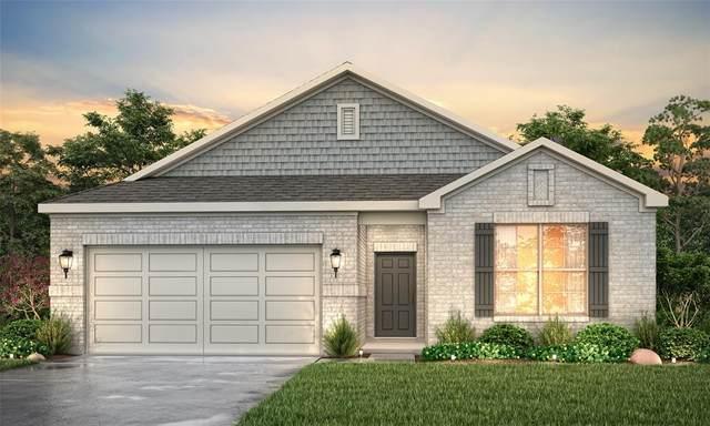 25308 Broad Turtle Lane, Porter, TX 77365 (MLS #6712190) :: Texas Home Shop Realty