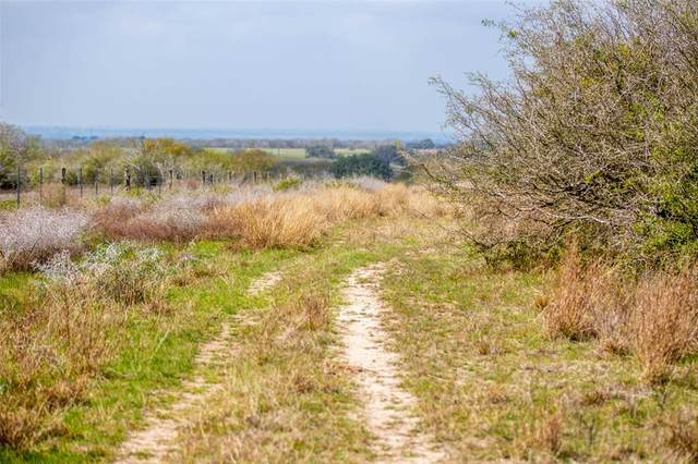 TBD Fm 884, Goliad, TX 77963 (MLS #67150469) :: The Home Branch