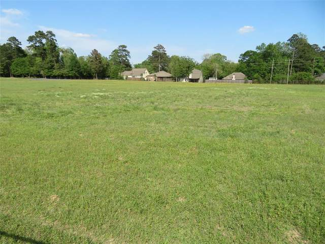 12372 Mustang Road, Willis, TX 77378 (MLS #67166958) :: The Sansone Group