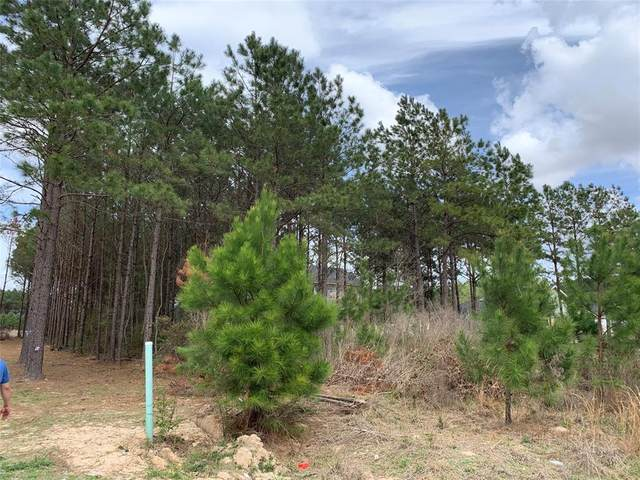71 County Road 3560, Cleveland, TX 77327 (MLS #67178323) :: Michele Harmon Team